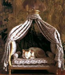 lit-pour-chat